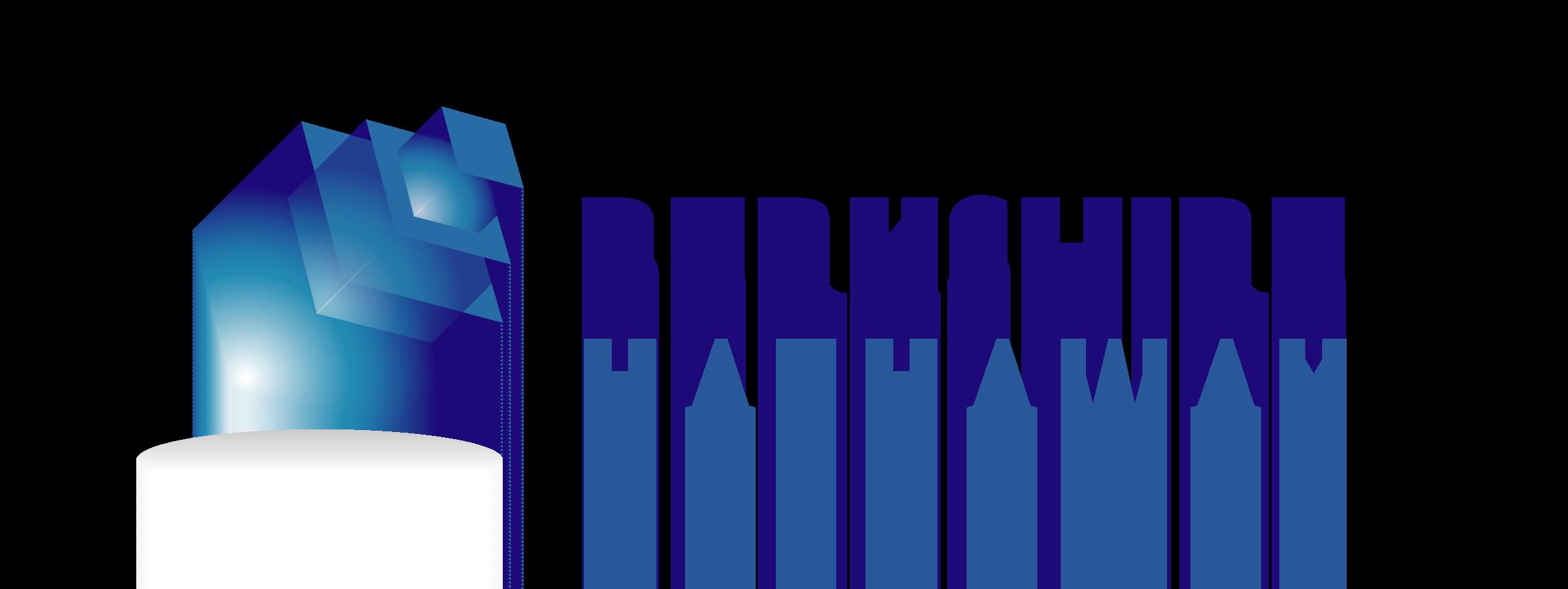 Berkshire Hathaway BRK.A logo